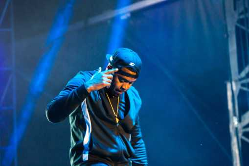 NAS-Bestival 2015/Stevie Gedge